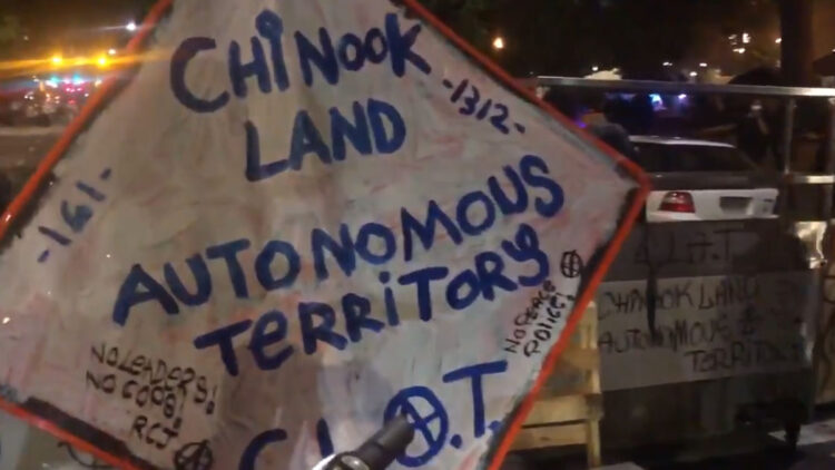 mayor-graffiti-help-in-antifa-run-city