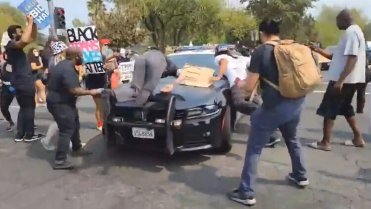 Protesters Do The Stupidest Things